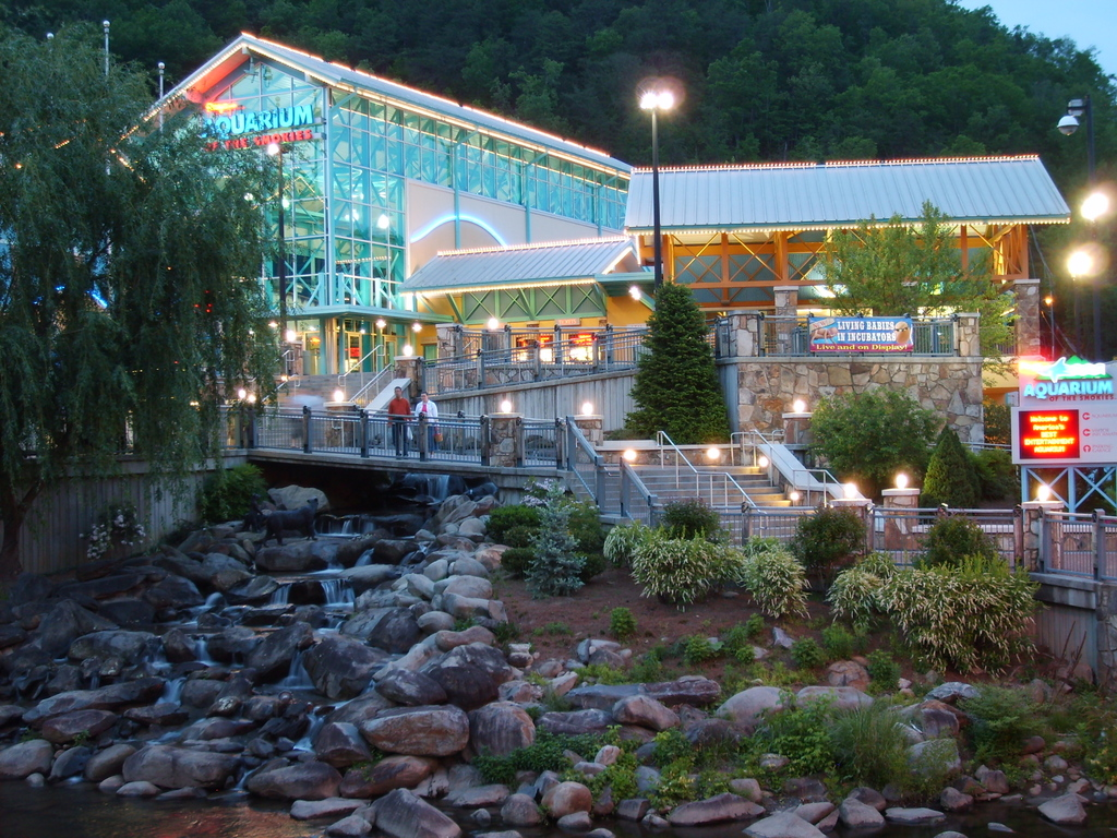 Gatlinburg Timeshare